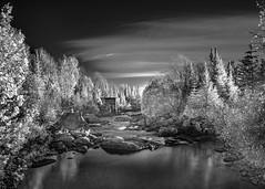 Isolated (MomoFotografi) Tags: hoya r72 infrared bw landscape trees river