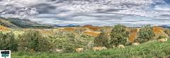 Arette-quartier Ourdie - Vallée de Barétous (https://pays-basque-et-bearn.pagexl.com/) Tags: 64 altitude aquitaine arette béarn colinebuch france nouvelleaquitaine pyrénéesatlantiques quartierourdie hautbéarn montagne nature pyrénées sudouest valléedubarétous