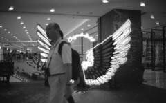 (von Calven Lee) Tags: leica leicam6 m6 summilux rollfilm blackandwhite blackwhite 35mm kodak100tmax 11871 leicaglow