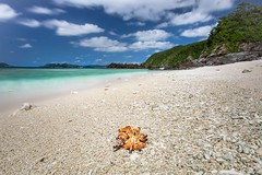 Tokashiki Tropical Island (twomphotos) Tags: okinawa japan sea ocean blue culture nature tokashiki beach white sand crystal clear water paradise bestoftrips