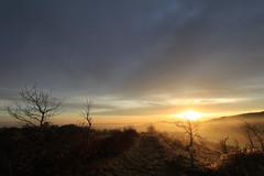 Morgenstimmung im Harz (Deutscher Wetterdienst (DWD)) Tags: wetter weather himmel sky sonnenaufgang sunrise morgenstimmung morningmood morgennebel morningfog licht light