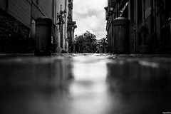these rainy days! (pukilin) Tags: nikond3100 35mm bw street calle streetphotography fotografíacallejera reflejos reflections monochrome blancoynegro