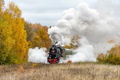 Steam in the Russian Woods (Parker.Wilson) Tags: steam russia locomotives engine 2100 soviet ussr autumn fall trains railroads railways