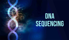 DNA Sequencing Market Size 2024 (hpcwqdwu49) Tags: dna sequencing market size share growth drivers