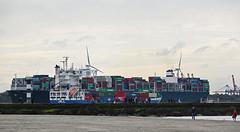 EVER GRADE & GREETJE (kees torn) Tags: hoekvanholland maasmond strand noorderhavenhoofdhoekvanholland containerschepen greetje nieuwewaterweg