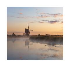 Tranquillity at Broekmolen (Rob Schop) Tags: broekmolen alblasserwaard streefkerk tranquility calm morning goodmorning reflection windmill fog mist ducks softtones prime sigma30mm14 sonya6000 11 composition zuidholland sunrise holland
