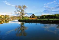 Fresca mañana (11ºC) en Irún (eitb.eus) Tags: eitbcom 16599 g1 tiemponaturaleza tiempon2019 gipuzkoa irun josemariavega