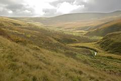 WildMoor (Tony Tooth) Tags: nikon d600 tamron 2470mm landscape countryside moors moorland wildmoor buxton derbyshire england peakdistrict darkpeak