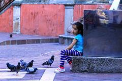 Little Girl and pigeons (klauslang99) Tags: klauslang streetphotography girl pigeons guanajuato mexico