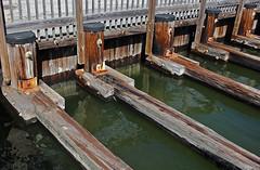 lines between Solomon's Is (scott1346) Tags: water pilings beams gap 1001nightsthenew architecturalfeature autofocus canont3i minutecanal 1001nightsmagiccity contactgroups