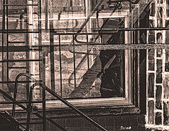 Window Frame Reflections and Abstracts (multi-exposure, in camera) (nrhodesphotos(the_eye_of_the_moment)) Tags: dsc82633001084 wwwflickrcomphotostheeyeofthemoment theyeofthemoment21gmailcom sepia blackandwhite multiexposure incamera abstract reflections shadows outdoors fireescape texture bricks bulidng artistic nyc window frame manhattan windowframe geometric lines shapes angles architecture textures metal