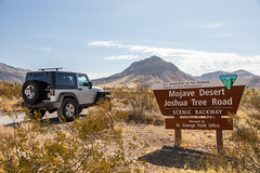 Joshua Tree Road (W9JIM) Tags: w9jim w9jeep jeep wrangler sign joshua tree mojavedesert joshuatreeroad joshuatreenationalnaturallandmark 5d4 24105l canoneos5dmarkiv ef24105mmf4lisusm