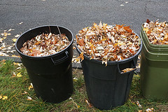 How to Dispose of Your Yard Waste (junkguruztx) Tags: waste yard lawn clean leaf autumn collection recycle garbage trash trashbin bin tree garden maintenance backyard cleanup container compost disposal environmental nature urbanscene road curb residential unitedstatesofamerica