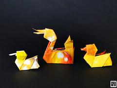 Duck and Ducklings - Stefan Delecat. (Magic Fingaz) Tags: anatra barthdunkan canard ecorigami ente kachna ördek origami origamiduck pato патица утка बत्तख เป็ด 오리 アヒル 鸭 mfpp papercraft craft