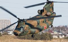 Kawasaki CH-47JA(52964)_20150111 (Carlos Yuichi) Tags: jgsdf ch47ja ch47 kawasaki 52964