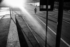 Sunday morning (Roberto Spagnoli) Tags: morning lightsandshadows bicycle bicicletta sport alone desertedstreets fotografiadistrada streetphotography biancoenero blackandwhite bw sunbeam controluce backlight