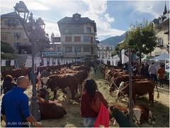 42e Foire Agricole de Saint-Gervais