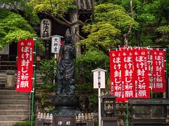 Banners and signs (Tim Ravenscroft) Tags: imakumanokannonji temple banners kanji statue foliage kyoto japan hasselblad hasselbladx1d buddhist