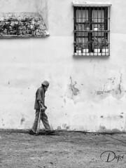 22-10/365_La calle (Dopior) Tags: 2010 hombre marginal series sociales