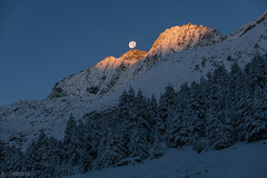 Moon setting at sunrise - Lac bleu (Captures.ch) Tags: aufnahme capture landscape alpen alps baum berge forest glacier gletscher himmel hügel lake landschaft lärche larch mountains see stein sky stone tal tree valley wald switzerland swiss schweiz wallis evolène lacbleu valais valdhérens autumn fall foliage herbst dusk morgen morgendämmerung morning sonnenaufgang sunrise clear klar schnee snow