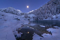 Moonlight - Lac Bleu (Captures.ch) Tags: aufnahme capture landscape alpen alps baum berge forest glacier gletscher himmel hügel lake landschaft lärche larch mountains see stein sky stone tal tree valley wald switzerland swiss schweiz wallis evolène lacbleu valais valdhérens autumn fall foliage herbst dusk morgen morgendämmerung morning sonnenaufgang sunrise clear klar schnee snow