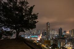 Only A Hint (TVZ Photography) Tags: quarryhill homantin lokmansunchuen kowloon hongkong tree city cityscape landscape night evening lowlight longexposure sonya7riii sony 1635mm sel1635gm