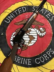 Winchester Model 9422M XTR. Reblued