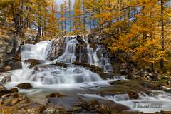 Cascade de Foncouverte (jean-louis21) Tags: cascade mélèzes automne waterfall france vallée de la clarée automn colors alpes yellow orange golden larches