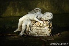 Cherub - South Ealing Cemetery (vbadwolf) Tags: south ealing cemetery graveyard goth gothic victorian cemeteries london angel statue cherub dark