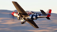 Mustang (EverydayTuesday) Tags: p51 p51d mustang goldenhour rollsroyce merlin v12 reno nv nevada stead airport renoairraces canon 80d 100400