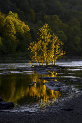 Golden Hour in Harper's Ferry (crabsandbeer (Kevin Moore)) Tags: autumn fall harpersferry leaves nature reflection smalltown tree westvirginia wv goldenhour shenandoah river shenandoahriver water light sunset october landscape beauty