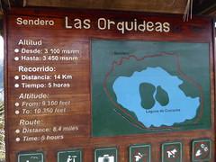 The Orchid Trail at Laguna de Cuicocha, Ecuador  April 2019 (MisterQque) Tags: theorchidtrail senderolasorquideas ecuador andes latinamerica southamerica