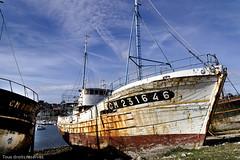 L'épave (Lucille-bs) Tags: europe france bretagne finistère crozon camaretsurmer épave bateau marine mer