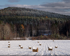 Fresh snow (Nikolay Obukhov) Tags: forest fall autumn snow first haystack mountain woods ural russia landscape