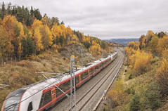 A train traveling (Tamara Lopes photographer) Tags: autumn background beautiful color colorful countryside direction fall forest green infrastructure landscape light line long natural nature nobody norway nsb old orange outdoor outdoors park path rail railroad railway road scenery scenic season sky station steel straight track traffic train transit transport transportation travel tree trees vestfold view way yellow
