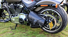FTW Forever Two Wheels-Harley (Caught On Digital) Tags: custom ftw forevertwowheels harleydavidson motorbike motorcycles suffolk