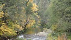 North Fork Tuolumne River