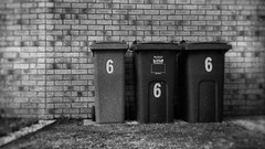 Bins of the Beast (Delay Tactics) Tags: bins beast sheffield wheelie 666 number revelations bible prophesy prediction religion six three sixes triple grass wall lawn 169 16x9 black white devil antichrist satan worship blackandwhite bw monochrome rubbish collection refuse city council recycle recycling omen