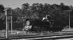 Ol49 -69 (vsoe) Tags: eisenbahn bahn züge personenzug plandampf dampflok dampf dampfzug train railway railroad engine steamengine steam passengertrain polen polska poland pl pkp wolstein wolszyn