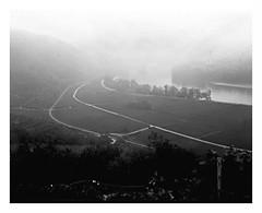 Weissenkirchen (ravelliphotos) Tags: paper negative sw bw blackandwhite large format ica fomaspeed