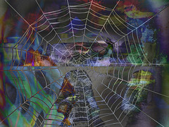 Another Crazy Halloween Night (soniaadammurray - On & Off) Tags: digitalphotography manipulated experimental collage picmonkey photoshop abstract halloween spider web nighttime haunted trees shadows reflections artchallenge shocktober