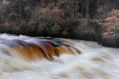 Photo of Falls of Clyde