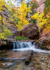 Fall (Eric Zumstein) Tags: kanarrafalls cedarcity utah unitedstatesofamerica slotcanyon water