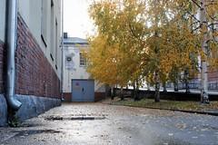 _Q3A4880 (www.ilkkajukarainen.fi) Tags: helsinki street fotography photography autumn suvilahti syksy helsinkistreets sreetphotography suomi finland finlande eu europa scandinavia scandinava