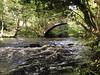 River Washburn at Dob Park Bridge, North Yorkshire - an autumn day
