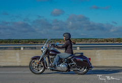 Plum (tbottom) Tags: daytona biketoberfest bikeweek bike motorcycles staugustine florida fortmatanzas terrybottom