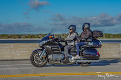 Mr & Mrs Goldwing 2 (tbottom) Tags: daytona biketoberfest bikeweek bike motorcycles staugustine florida fortmatanzas terrybottom