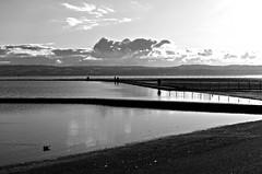 West Kirby Waters BW (ronramstew) Tags: westkirby wirral merseyside autum 2019 marina clouds