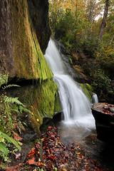 Cedar Rock Falls (csnyder103) Tags: waterfall waterfallsofthecarolinas westernnorthcarolina pisgahnationalforest canonefm1122 canoneosm6mkii