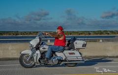 Red Bandana & a Ponytail (tbottom) Tags: daytona biketoberfest bikeweek bike motorcycles staugustine florida fortmatanzas terrybottom